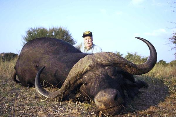 Cape_Buffalo_Dugga_Boy_3_RES_600_400_cy_100