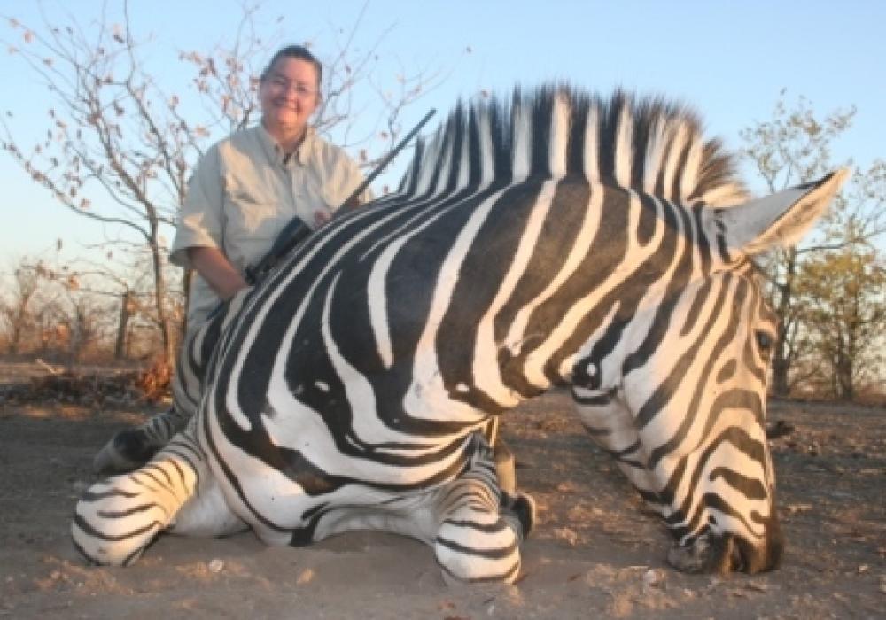 Zebra_trophy_448_299_cy_100